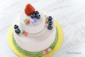 フラワーケーキコース(2段ケーキ)